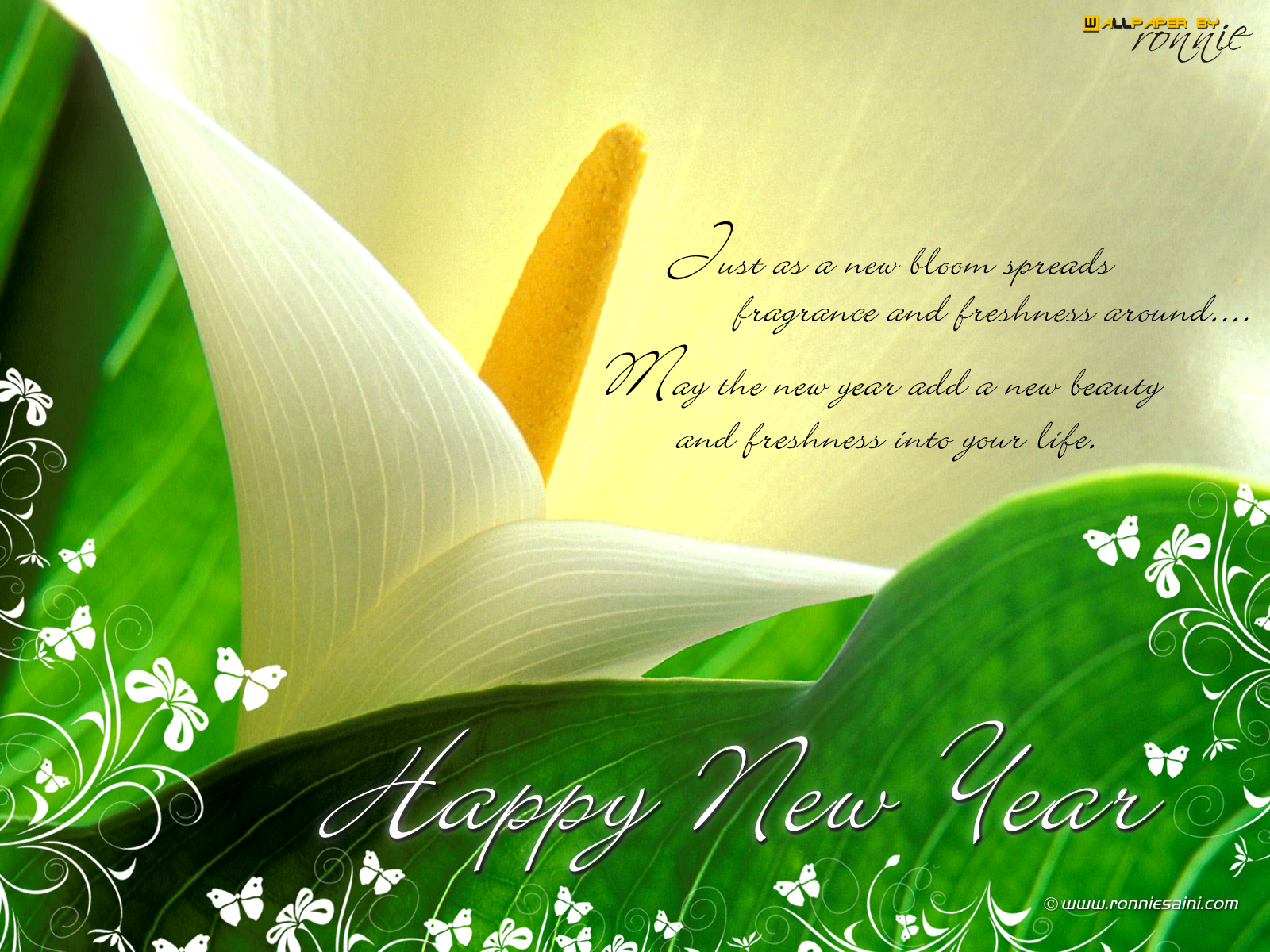 Wallpaper download pagalworld - Happy New Year 1600x1200